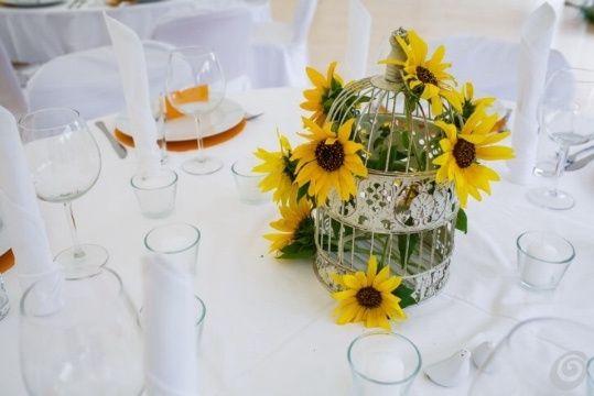 Girasoli Matrimonio Ottobre : Girasoli organizzazione matrimonio forum