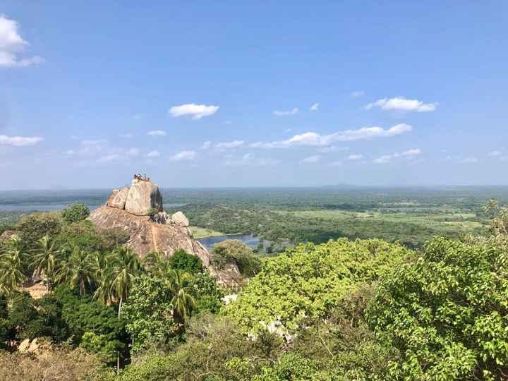 Viaggio di nozze in Sri Lanka - 3