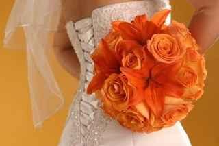 arancio e bianco