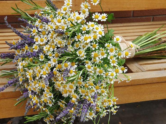 Bouquet erbe aromatiche - 1