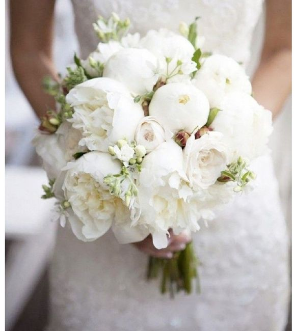 Bouquet Sposa Carta Da Zucchero.Bouquet Peonie Organizzazione Matrimonio Forum Matrimonio Com