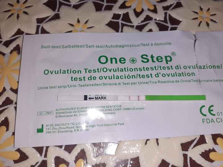 Test - 1