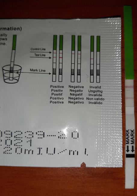 Test Ovulazione Ferometer 2