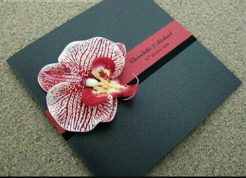 Segnaposto Matrimonio Orchidea.Matrimonio Tema Orchidee Organizzazione Matrimonio Forum
