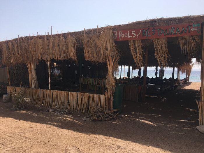 Sharm che sorpresa 😮 - 2