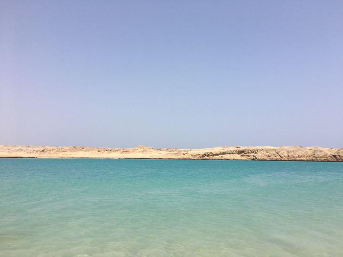 Sharm che sorpresa 😮 - 3