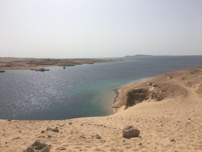 Sharm che sorpresa 😮 - 5
