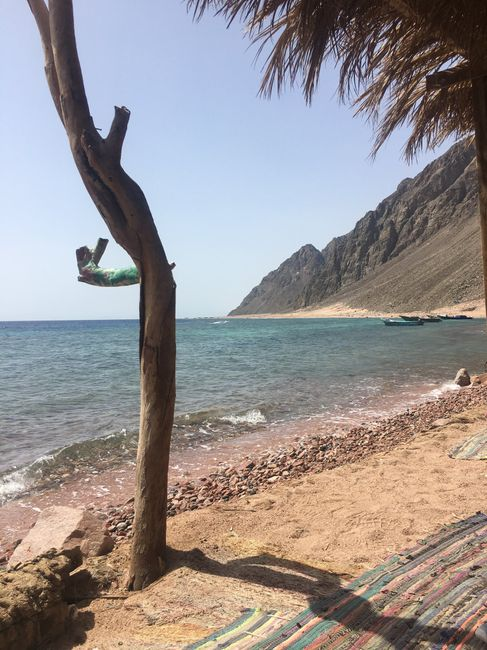 Sharm che sorpresa 😮 - 11