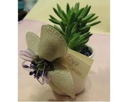 Bomboniere piante grasse fai da te occorrente - Fai da te - Forum Matrimonio.com