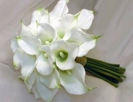 Spose di settembre quali fiori avete scelto? - 1