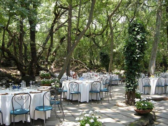 Matrimonio Bosco Toscana : Location bosco per cerimonia e banchetto ricevimento di