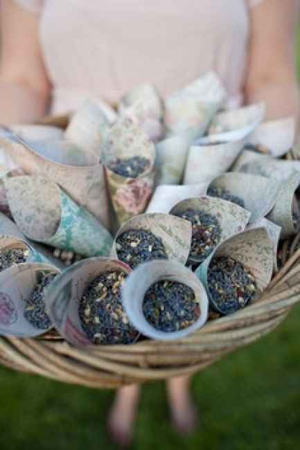 Alternativa al lancio del riso: i semi di lavanda