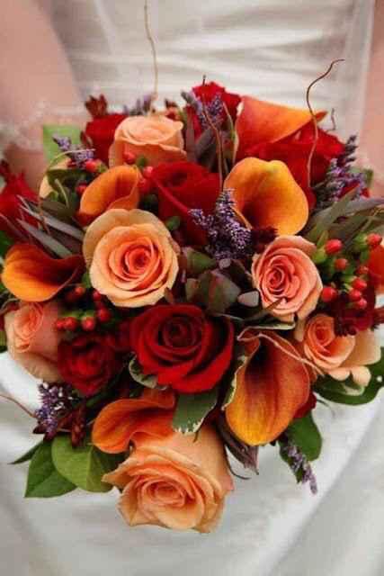 B di Bouquet - 1