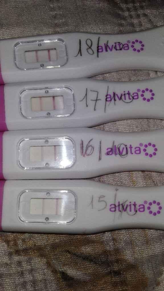Oggi che dite (ovulazione) - 1