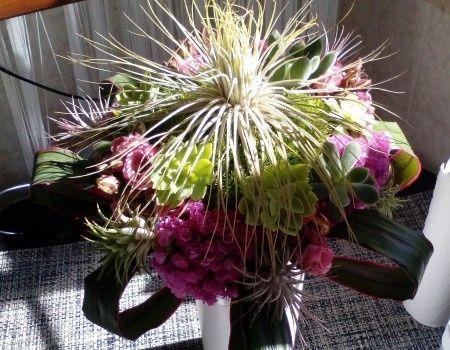 bouquet piante grasse e tillansie 2