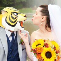 """Matrimoni """"particolari"""" - 1"""
