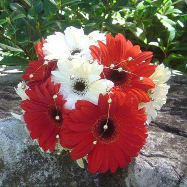 Gerbera come fiore per il mio bouquet da sposa? 6