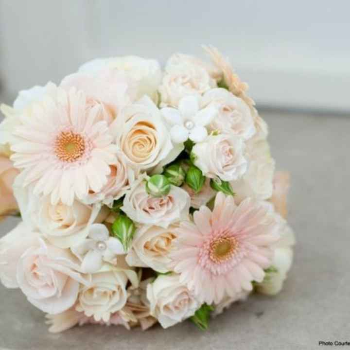 gerbera come Bouquet? - 11