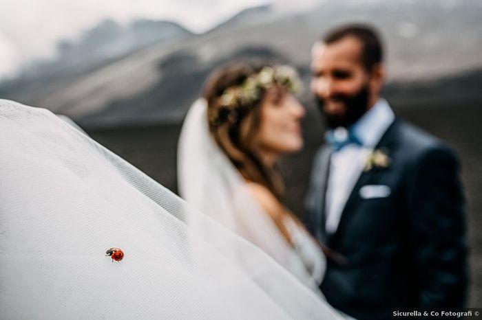 Il verde nei matrimoni: vota il tuo scatto preferito 1