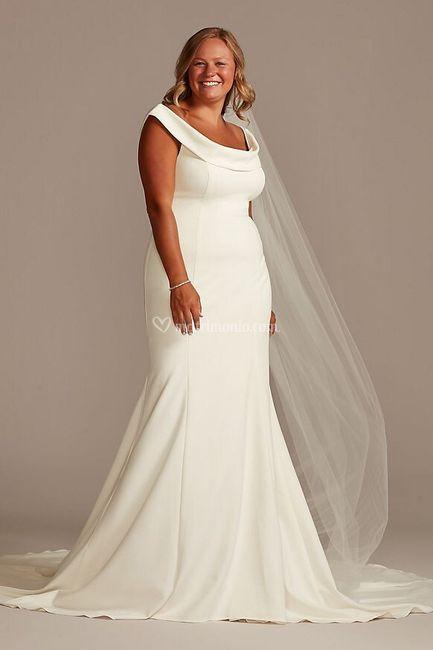 Abito 4: David's Bridal 1