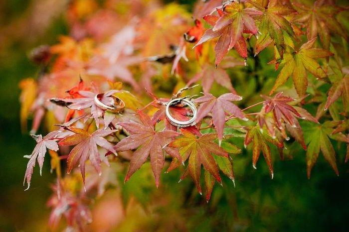 Matrimonio Tema Ottobre : Matrimonio autunnale ottobre jk regardsdefemmes