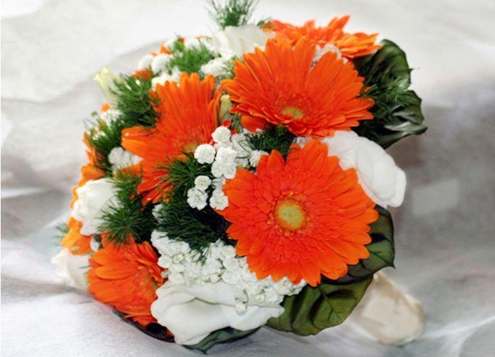 Fiori arancioni organizzazione matrimonio forum for Fiori gerbere