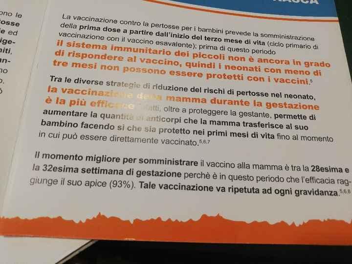 Vaccino pertosse 😱 - 1