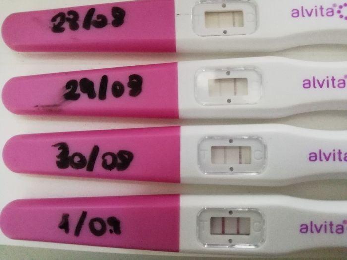 Test ovulazione come test di gravidanza. 2