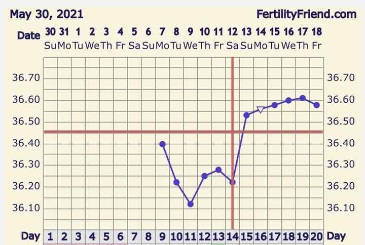Esperte di temperatura basale venite a me🌸 - 1