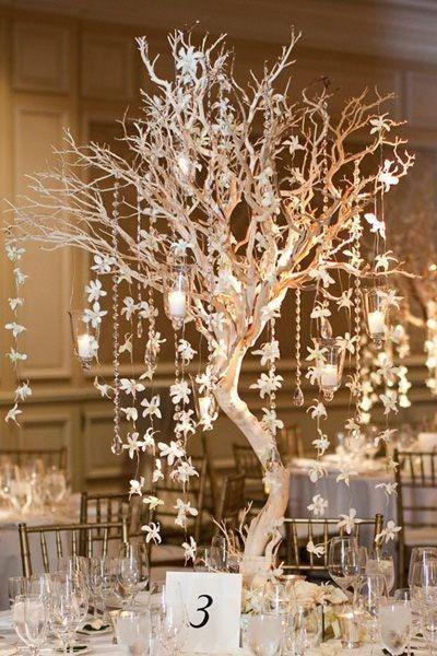 Matrimonio Tema Albero : Tema albero centrotavola organizzazione matrimonio forum