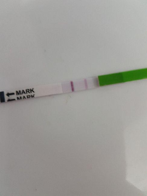 Stick ovulazione interpretazione - 1