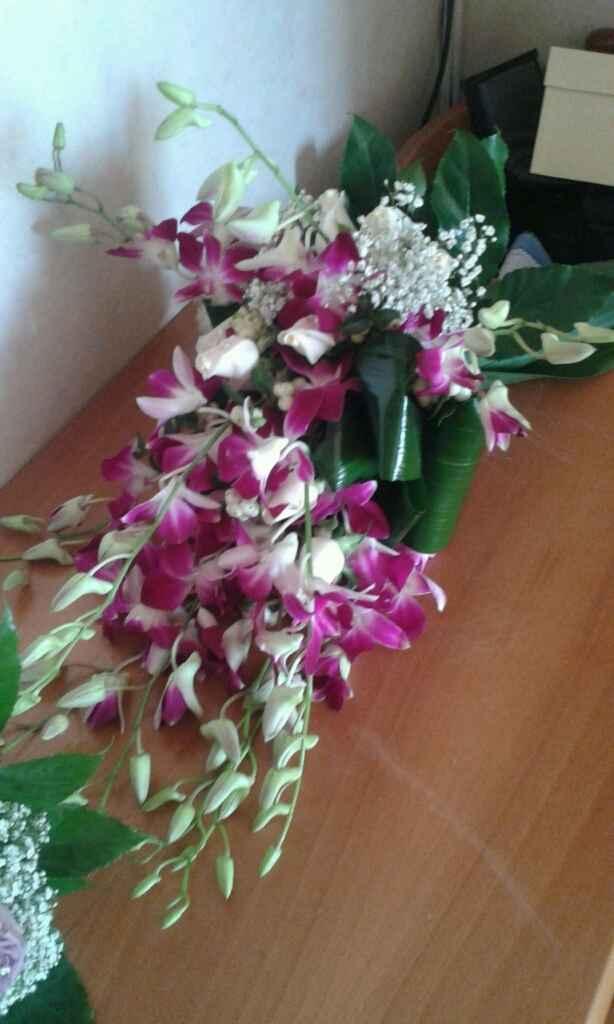 Orchidee - 1