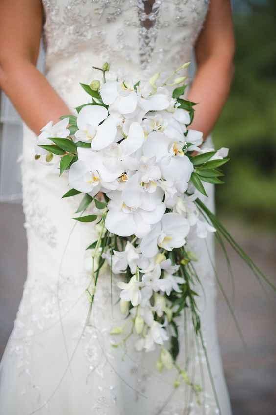 Bouquet. - 1