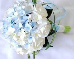 Fiori azzurri per bouquet , 2