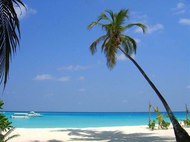 ? maldive.. ma quale atollo mi consigliate? - 1