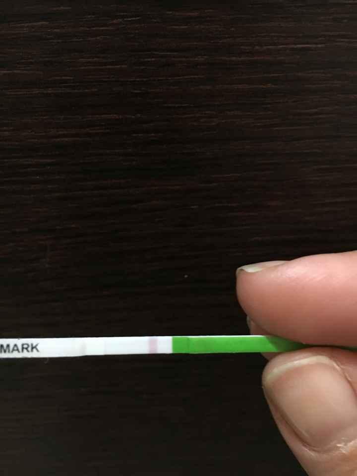 Interpretazione Test ovulazione Aiuto! - 3