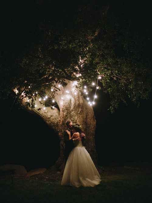 Idea foto sotto l'albero di notte