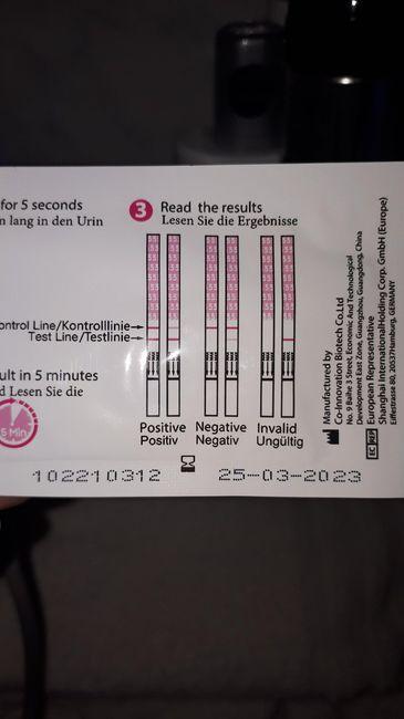 Test ovulazione - 2