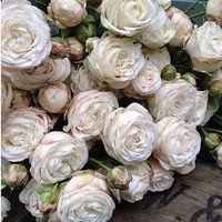 Bouquet e fiori: scelti!! - 2