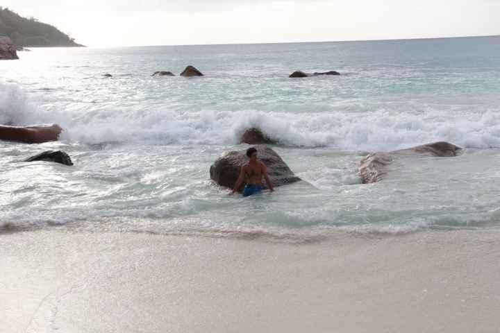 un sirenetto spiaggiato