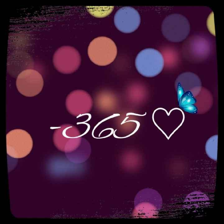 -365 giorni al Si ❤ - 1