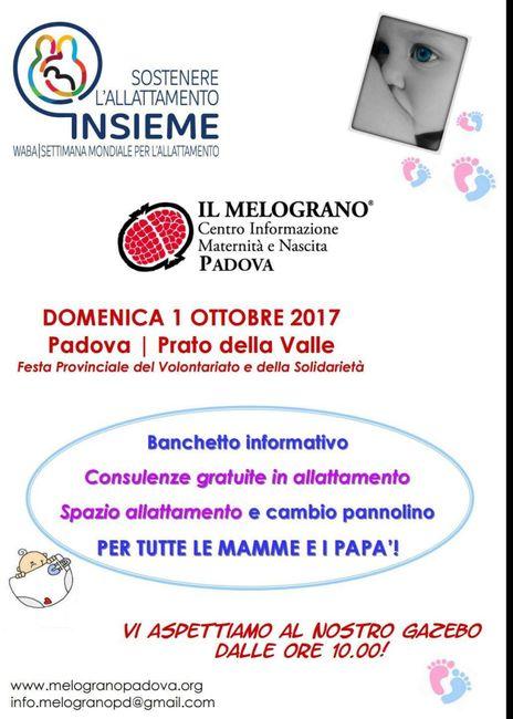 Ragazze di Padova - 2