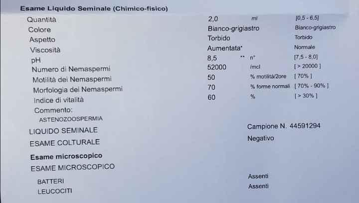 Esiti spermiogramma - 1