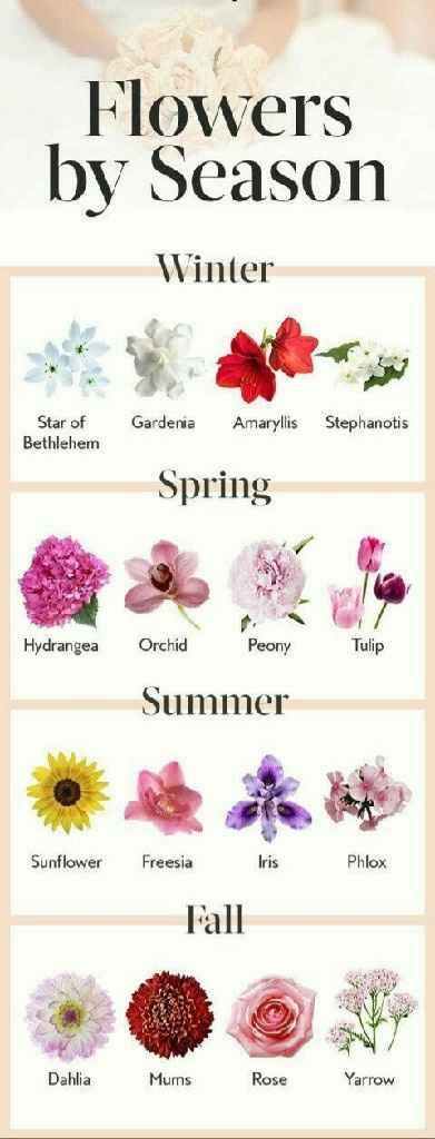 Il bouquet per ogni stagione!🌹🌸🌻🌼 - 1
