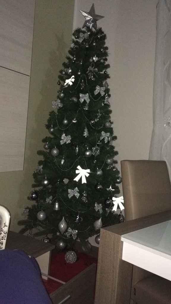 Il nostro primo albero di natale ? - 2