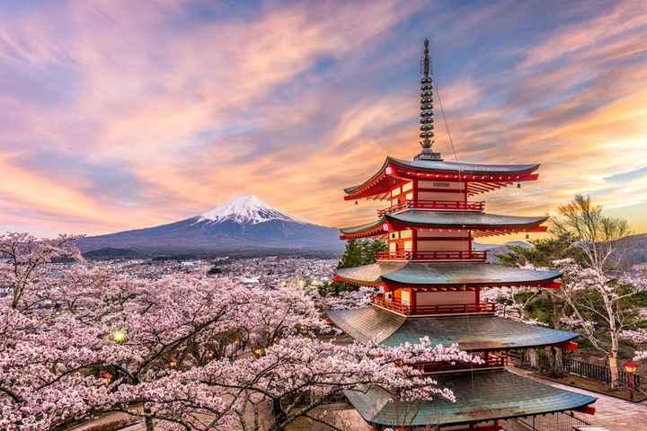 Viaggio Giappone + Polinesia 🎋🌺 Sogno impossibile? - 1