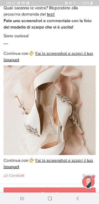 Fai lo screenshot e scopri le tue scarpe 20