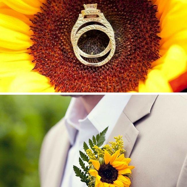 Matrimonio tema girasoli🌻 5