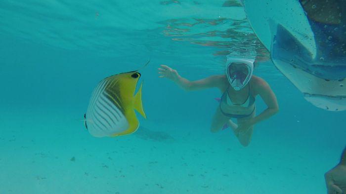 In diretta: America + Polinesia ... Parte otto, Rangiroa! 7