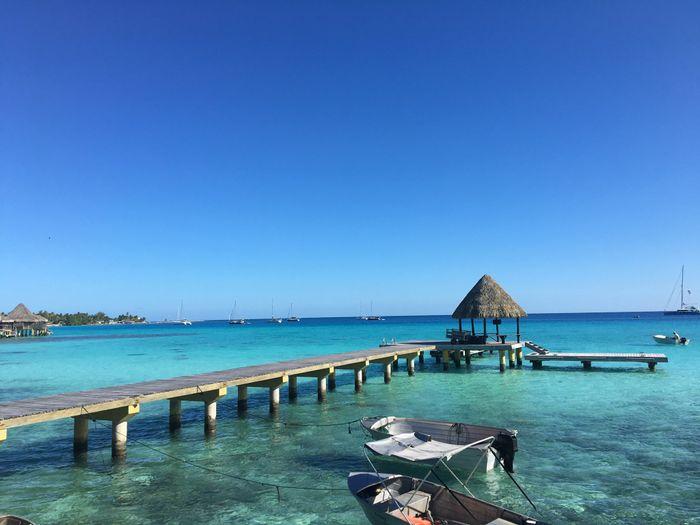 In diretta: America + Polinesia ... Parte otto, Rangiroa! 15